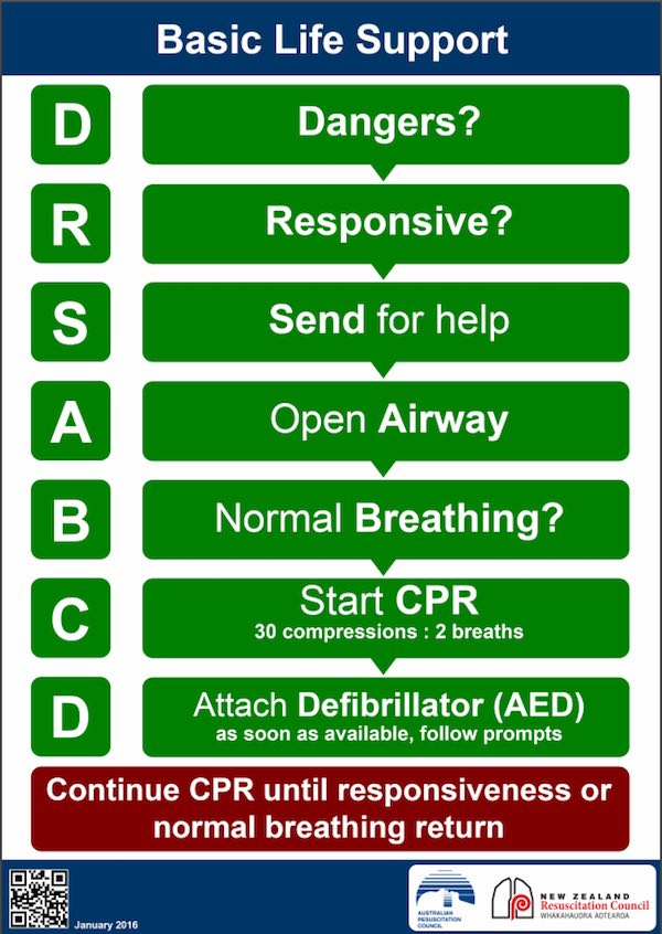 basic-life-support-flow-chart